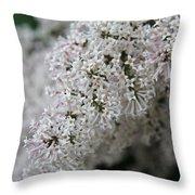 Fresh Lilac Perfume Throw Pillow