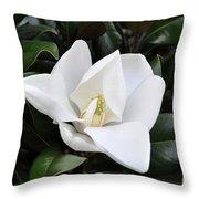 Fresh Magnolia Throw Pillow