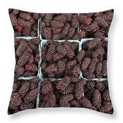 Fresh Marionberries Throw Pillow