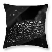 Fresh Morning Dew Throw Pillow