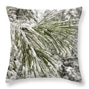 Fresh Snow Covers Needles On A Pine Throw Pillow