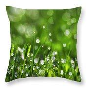 Fresh Spring Morning Dew Throw Pillow