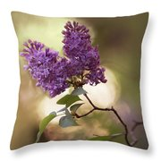 Fresh Violet Lilac Flowers Throw Pillow