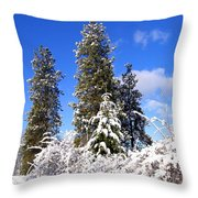 Fresh Winter Solitude Throw Pillow
