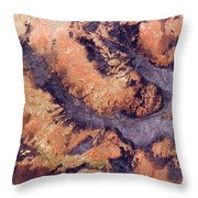 Freshly Burned Savanna In The Denuded Throw Pillow