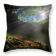 freshwater impressions I Throw Pillow
