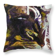 Friday In The Sun Throw Pillow