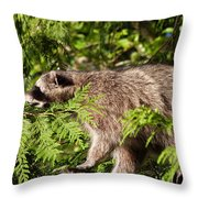 Friday May 20 2016 Throw Pillow