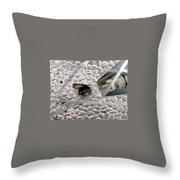 Fried Fly Throw Pillow