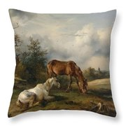 Friedrich Gauermann A Grey And A Chestnut In The Pasture  1825 Throw Pillow