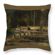 Friedrich Voltz 1817 Nordlingen   Munich 1886 Forest Clearing At A Pond Throw Pillow