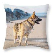 German Shepherd With Man On The Beach Throw Pillow