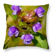 Friend Of The Flower King Throw Pillow