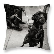 Friendly Dog Throw Pillow
