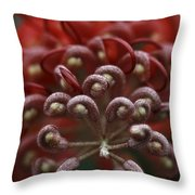 Friendly Foe Throw Pillow