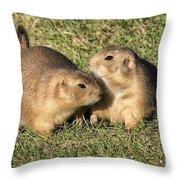 Friendly Prairie Dogs Throw Pillow