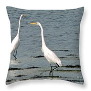 Friends 2 Throw Pillow