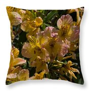 Friendship Yellow Alstroemeira Throw Pillow
