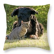 Friendships In The Animal World Is Possible Throw Pillow