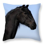 Friesian Stallion Throw Pillow