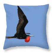 Frigate Flight Throw Pillow
