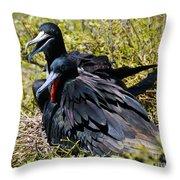 Frigatebirds In Love Throw Pillow