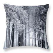 Frigid Forest Throw Pillow