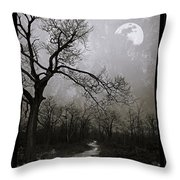Frigid Moonlit Night Throw Pillow