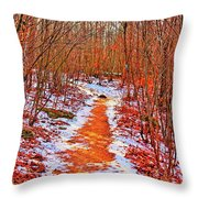 Frigid Walk Throw Pillow