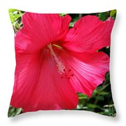 Frilly Red Hibiscus Throw Pillow