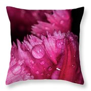 Fringed Tulip Throw Pillow