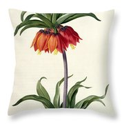 Fritillaria Imperialis Throw Pillow