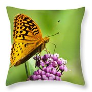 Fritillary Butterfly And Flower Throw Pillow