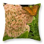 Fritillary On Flower Throw Pillow