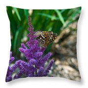 Fritllary Butterfly On Astilbe Throw Pillow
