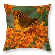 Frittalary And Milkweed Throw Pillow