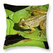 Frog 2 Throw Pillow
