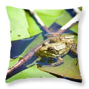 Frog 3 Throw Pillow