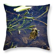 Frog 5 Throw Pillow