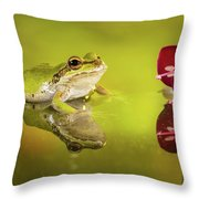 Frog And Fuchsia With Reflections Throw Pillow