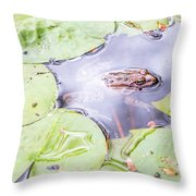 Frog And Lily Pads Throw Pillow