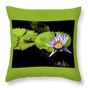 Frog And Lily Reflected Throw Pillow