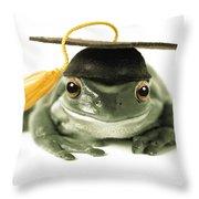 Frog Graduate Throw Pillow