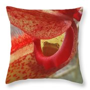 Frog In The Shade Throw Pillow