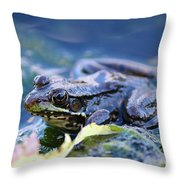 Frog In Water Throw Pillow