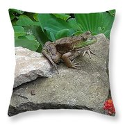 Frog On A Rock Throw Pillow