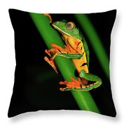 Frog Pole Vault  Throw Pillow