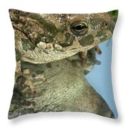 Frog Reflection Throw Pillow