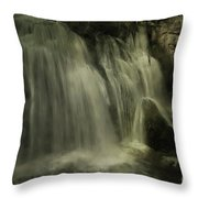 Frog Rock Throw Pillow