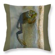 Frog Swim Throw Pillow